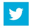 social_icon tw'